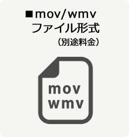 mov/wmvファイル形式(別途料金)